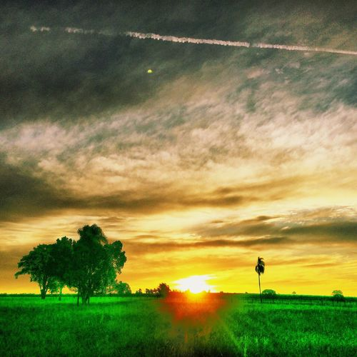 Avare SP BRASIL 🇧🇷☀️ Eye4photography  Sunset #sun #clouds #skylovers #sky #nature #beautifulinnature #naturalbeauty #photography #landscape EyeEm Best Shots EyeEmBestEdits EyeEmBestPics EyeEm Gallery EyeEm EyeEm Nature Lover Avare Heaven