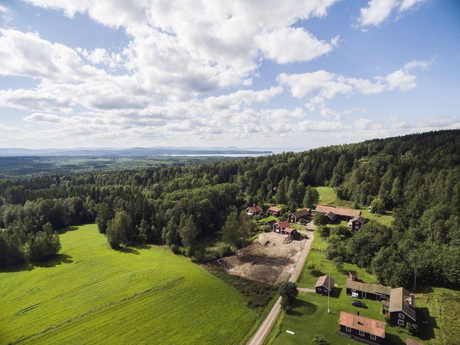 Beautiful stock photos of sweden, Cloud, Day, Grass, Green