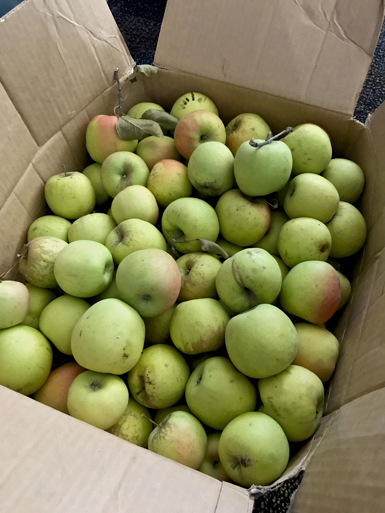 Apple Apples Box Of Apples Cardboard Box Food Food And Drink Freshness Fruit Green Apples  Green Color Healthy Eating High Angle View
