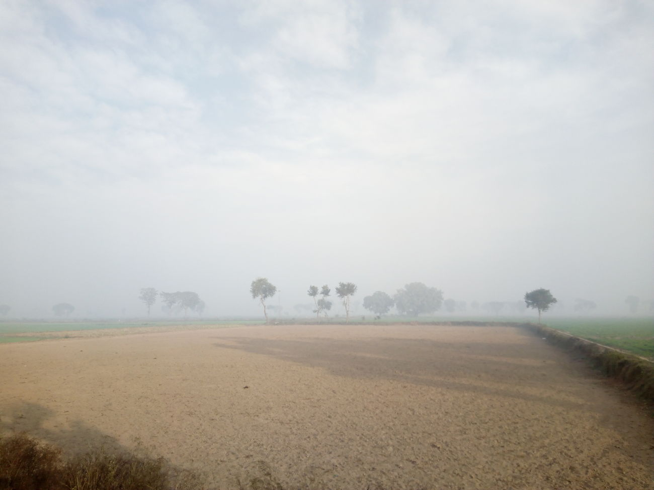 Fog Agriculture Landscape Weather Nature Tranquility Rural Scene Plowed Field Tree Tranquil Scene Beauty In Nature Day Sky Scenics Outdoors No People