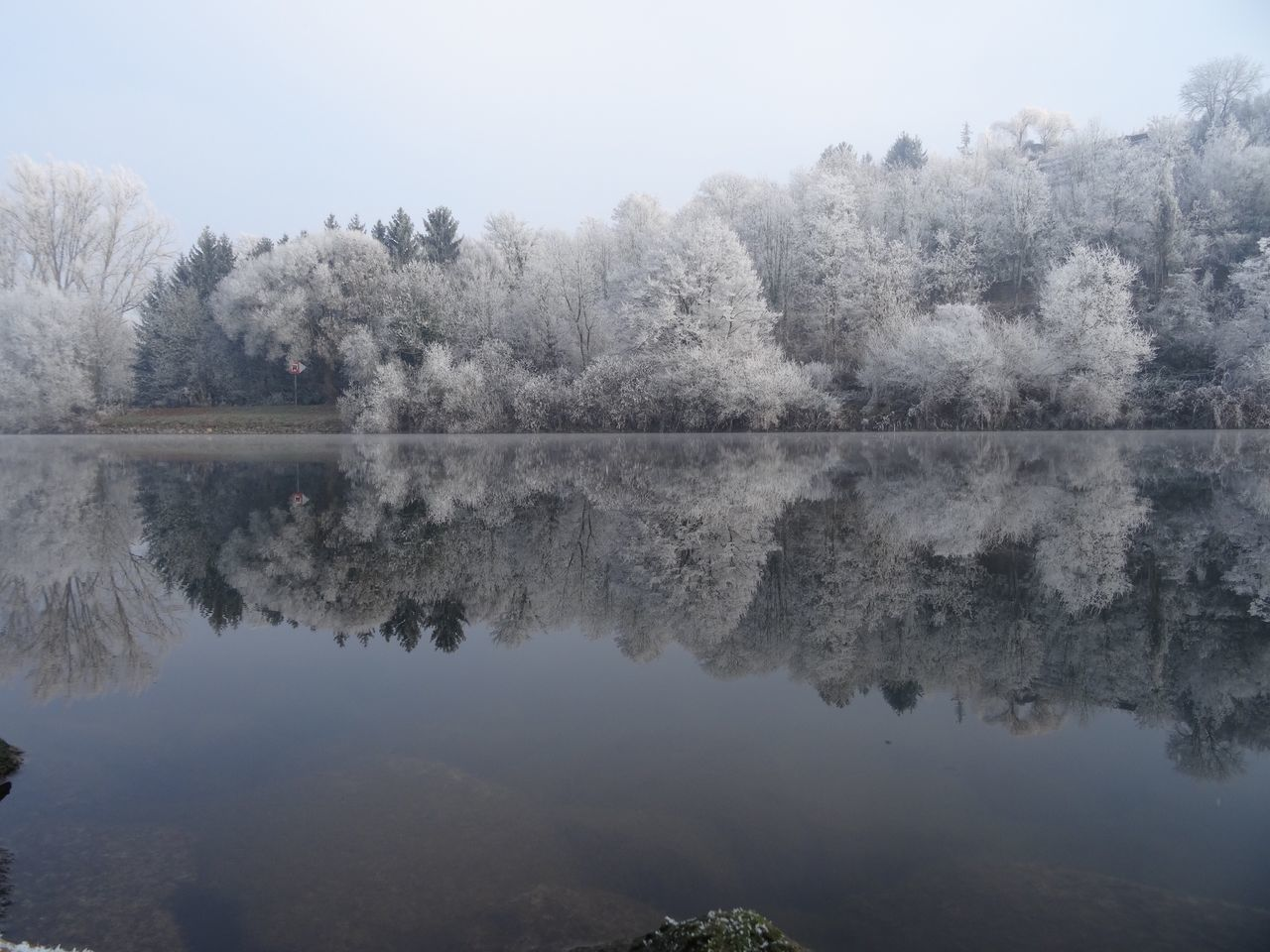 Neckar Outdoors No People Germany Tree Beauty In Nature Scenics Tranquil Scene Nature Symmetry Lake Reflection Water Peaceful Tranquility Cold Temperature Winter New Year Snow White Frost Frost Landscape Freshness Lake View Idyllic