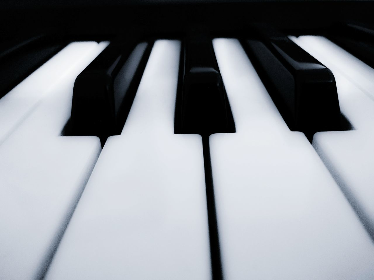 Close-up Piano Key Piano Indoors  No People 365 365 Day Challenge Musical Instrument Backgrounds 365project Blackandwhite Black And White Black & White Indoor Phone Blackandwhite Photography StillLifePhotography PhonePhotography Still Life Photography Phone Photography Close Up Photography Indoor Photography Phonecamera Still Life Closeupshot