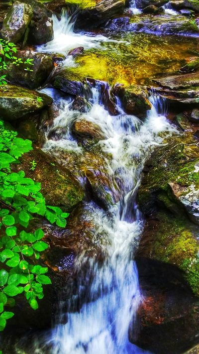 Waterfall Hikingphotography Naturetrail Anna Ruby Falls Helen Georgia Taking Time To See The Little Things Getting Inspired Beauty Of Nature EyeEm Nature Lover EmmieC