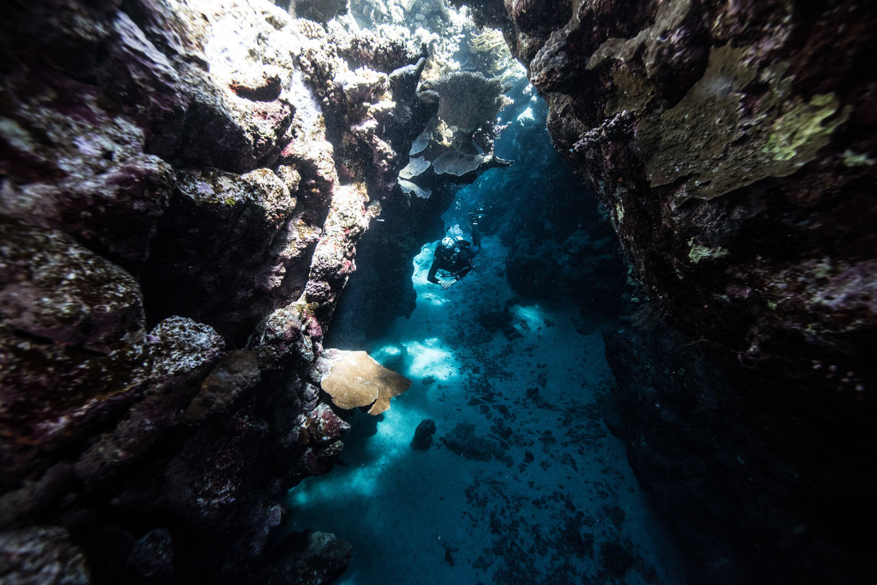 red sea Adventure Aquatic Sport Beatiful Nature Beauty In Nature Cave Coral Escape Exploration Explorer Extreme Adventures Light And Shadow Nature Nautical Vessel Ocean RedSea Rock - Object Rock Formation Scuba Diving Scubadiving Sea Solo Traveller Travel Photography UnderSea Underwater Unusual Beauty