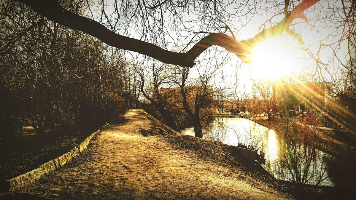 Tallinnlovers💙 💜life Is Good Visittallinn Spring Tallinna Packyourthingsandtravel Walking Around The City  💕💕cool Tranquility 💙 Amazing Day