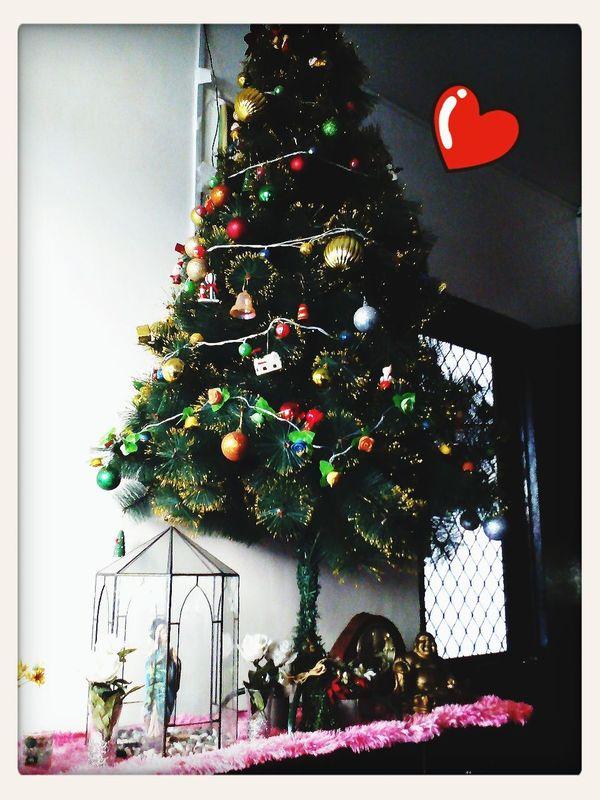 Advance Christmas to us °Δ°