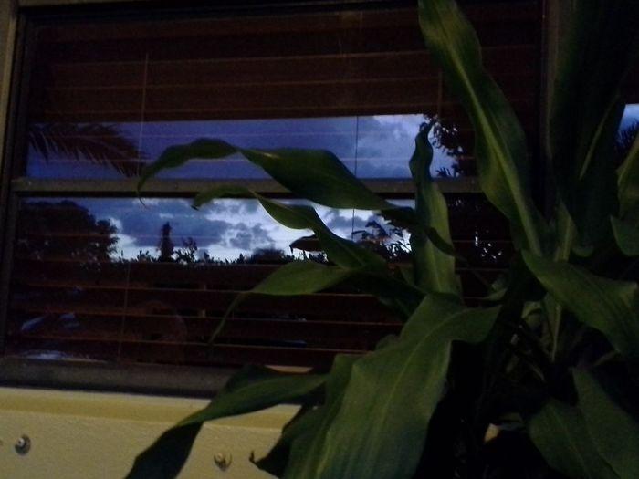 Throughmyeyes Window Art Eyeemclouds Eyeemwindow