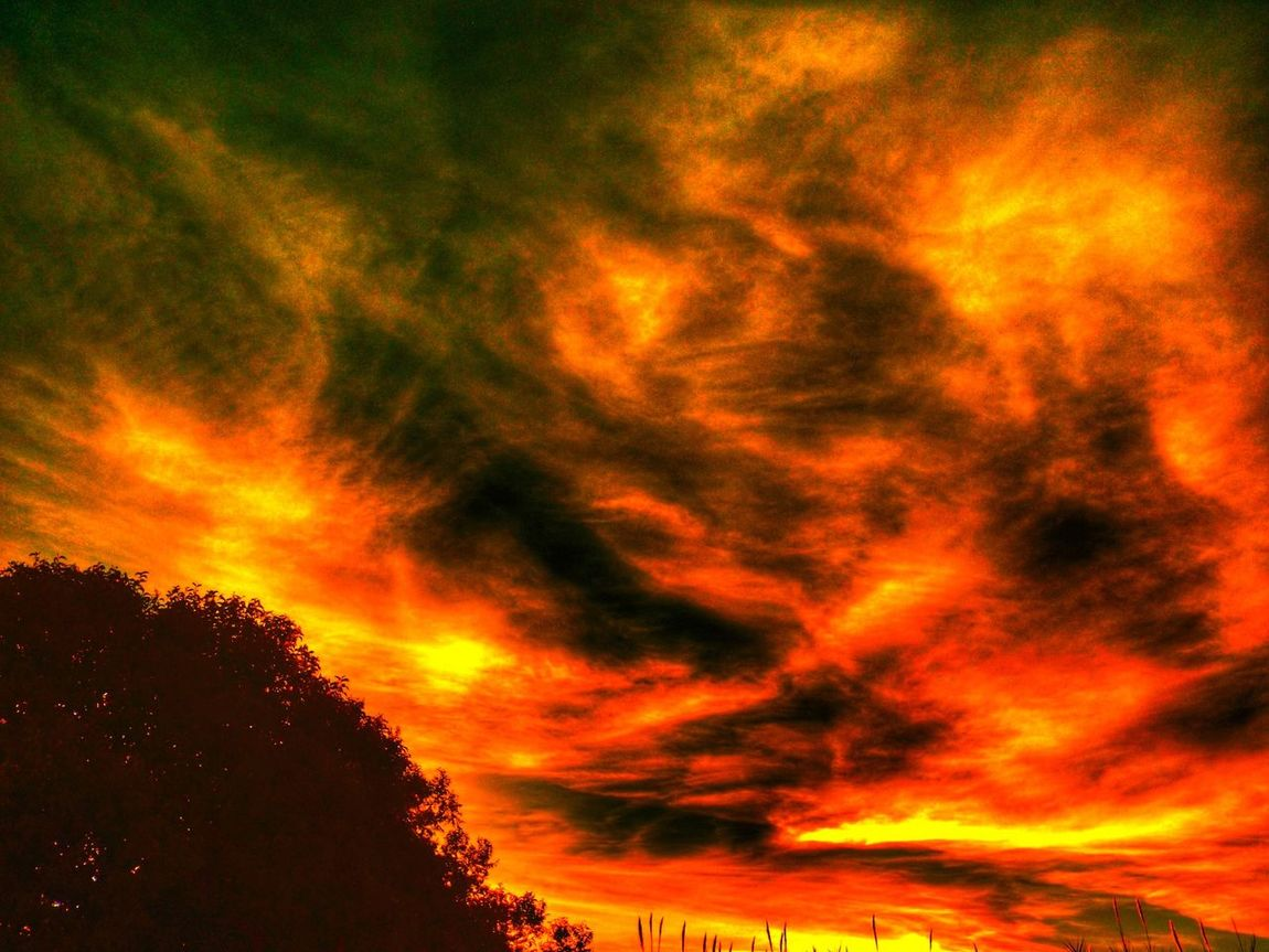 Sunset In Flames Clouds And Sky