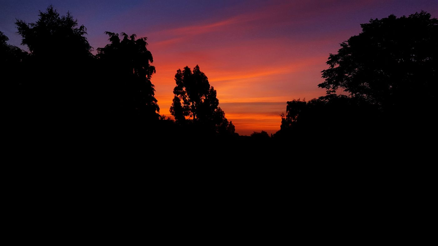 The view from my window this morning beautiful just like a painting Nature Sunrise Birmingham Moseley