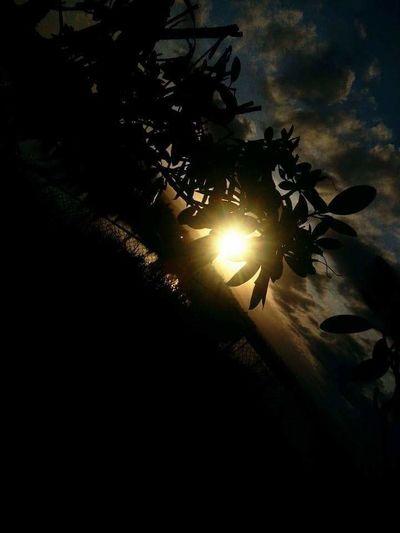 EyeEmxGettyImages Naturephotography Sunset_hub Natureandsky EyeEm Gallery Showcase: February Sunset_collection Gettyimagesgallery Getty Images Getty X EyeEm EyeEm Nature Lover Wild & Pure Northwestsunsets Sunset_captures Sun_collection, Sky_collection, Cloudporn, Skyporn Nature Photography Washington State Epic Shot Photography