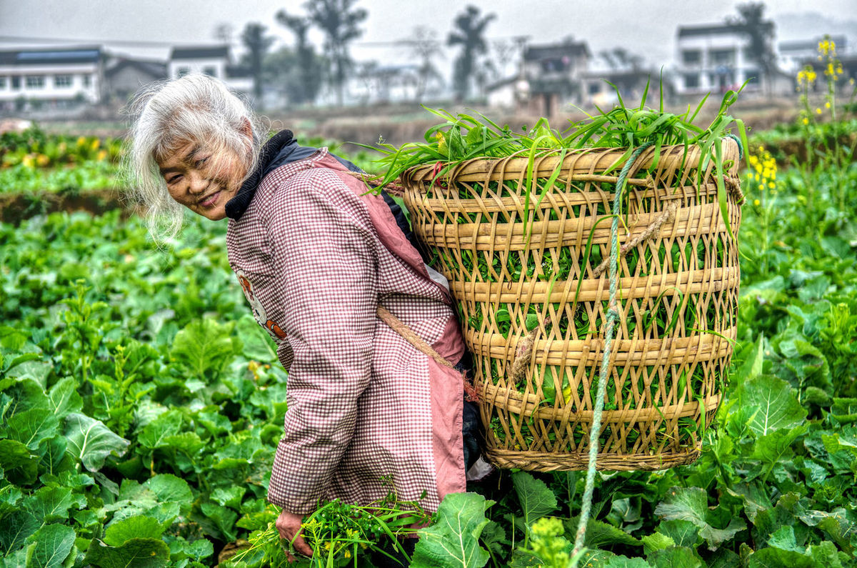 Somos todos irmãos 我们都是兄弟姐妹同住地球村 China China Beauty China Culture China In My Eyes China Photos China Style Culture Cultures Day Farm Farm Life Gray Hair Humanidad Humanidade Mankind One Woman Only Outdoors People Person Pessoa Plant Real People Senior Adult 人 人类