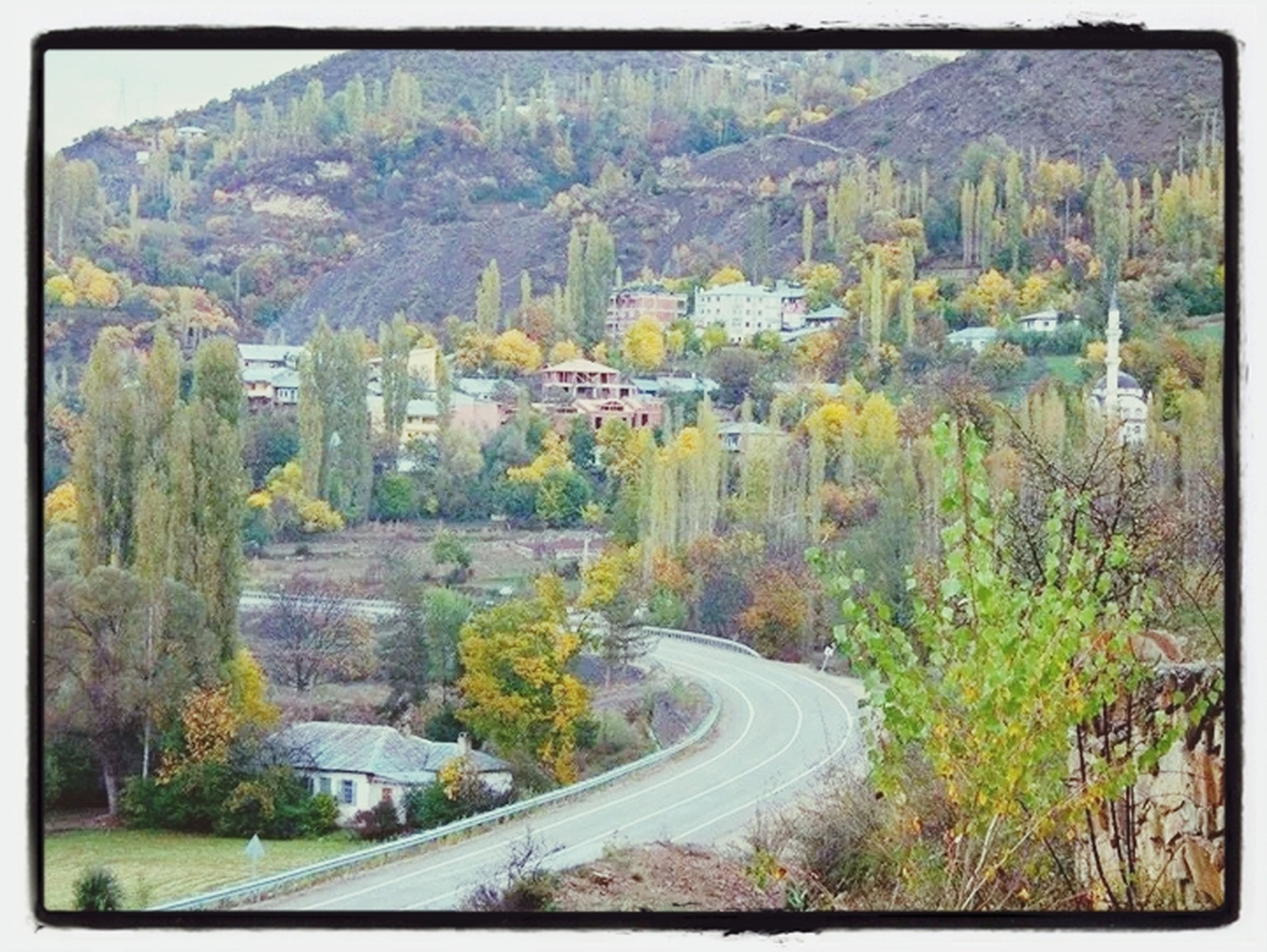 transfer print, auto post production filter, tree, road, high angle view, built structure, mountain, architecture, building exterior, nature, growth, beauty in nature, scenics, outdoors, tranquility, transportation, lush foliage, day, no people, tranquil scene