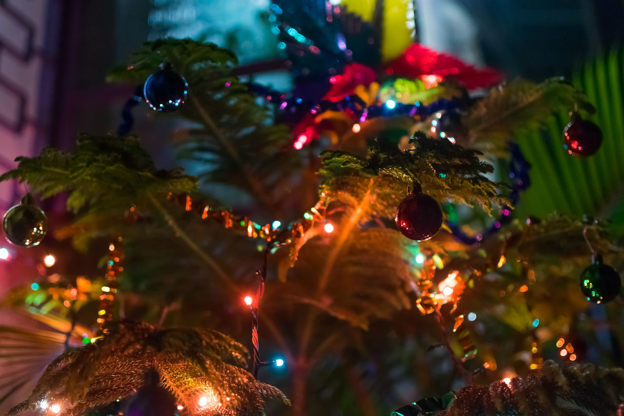 Home Coming at Christmas.. Bankura Bokeh Calcutta Celebrating Christmas Celebration Christmas At Home Christmas Decorations Colourful Balls!! Cultures Depth Of Field Detail Elégance Focus On Foreground Glass Glowing Home Coming Illuminated Lightings Night Selective Focus Variation