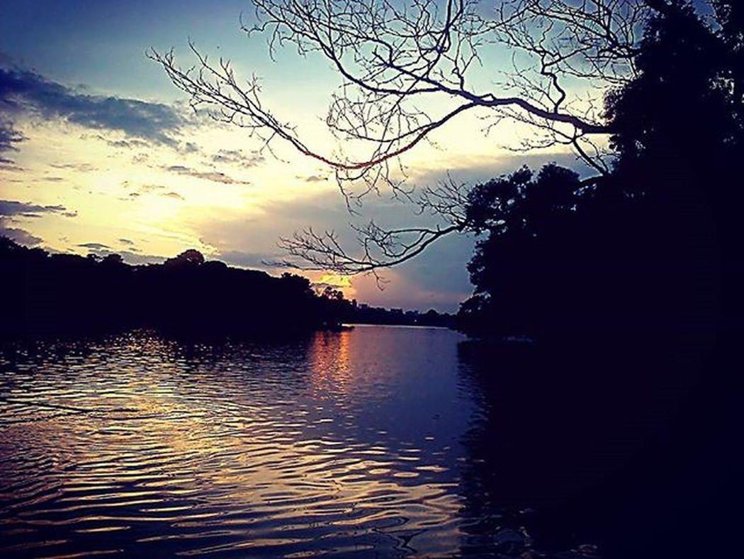 Lake Gölpark Lazyevening Nature Cloudporn Instagram Goodshot Instagram Creepytree Kolkata CityOfJoy Clouds