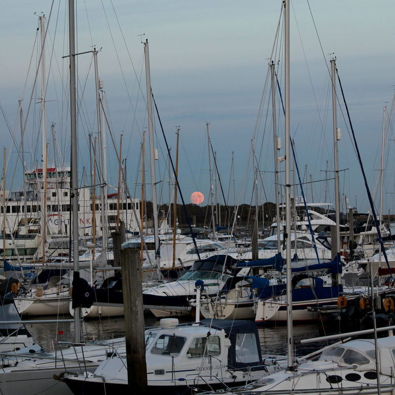 England, UK Harbor Marina No People Outdoors Sea Sky Square Sunset Supermoon2016 Yahts Yahts In The Harbor
