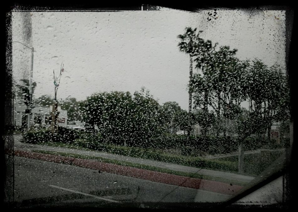 Drizzly morning.