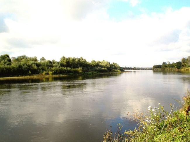 Nature Nature Photography Relaxing River EyeEmRussianTeam