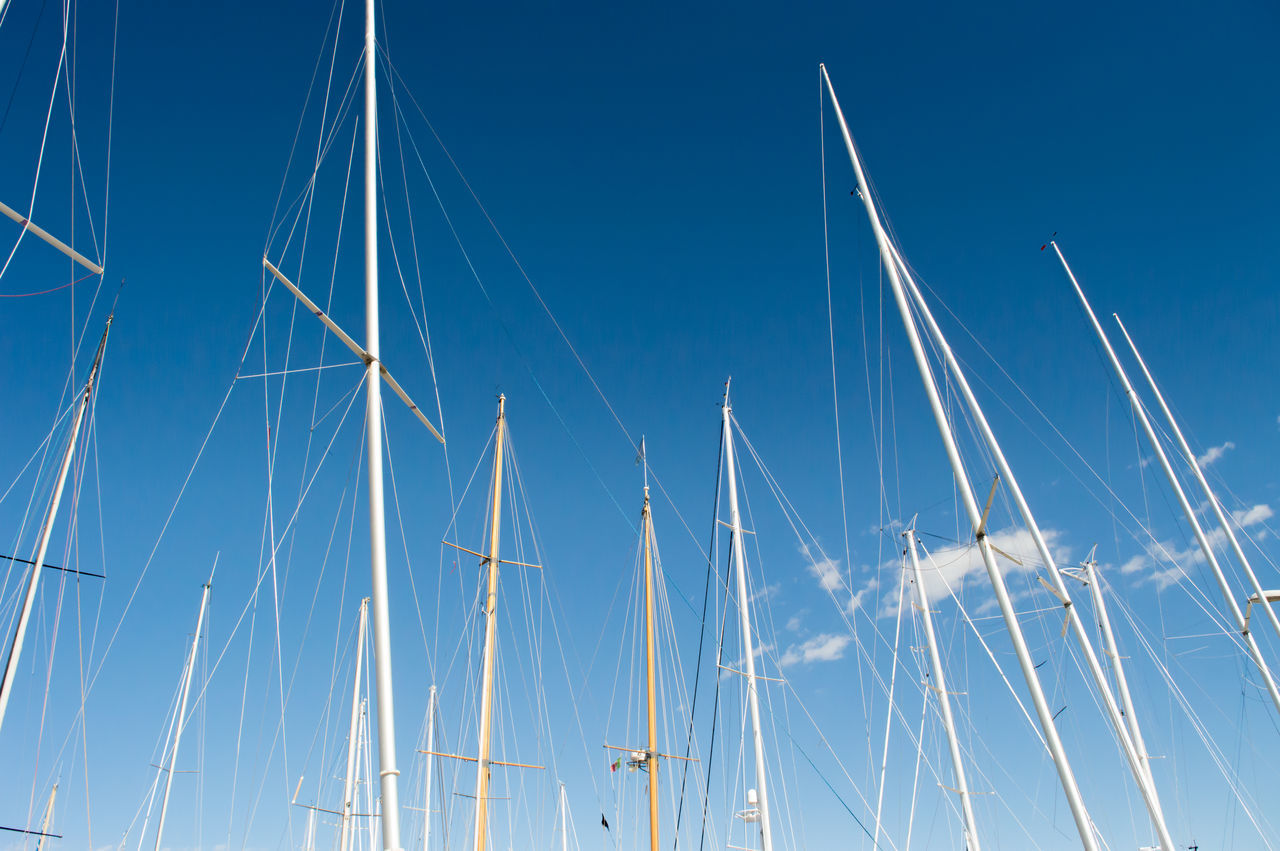 Masts Against Sky