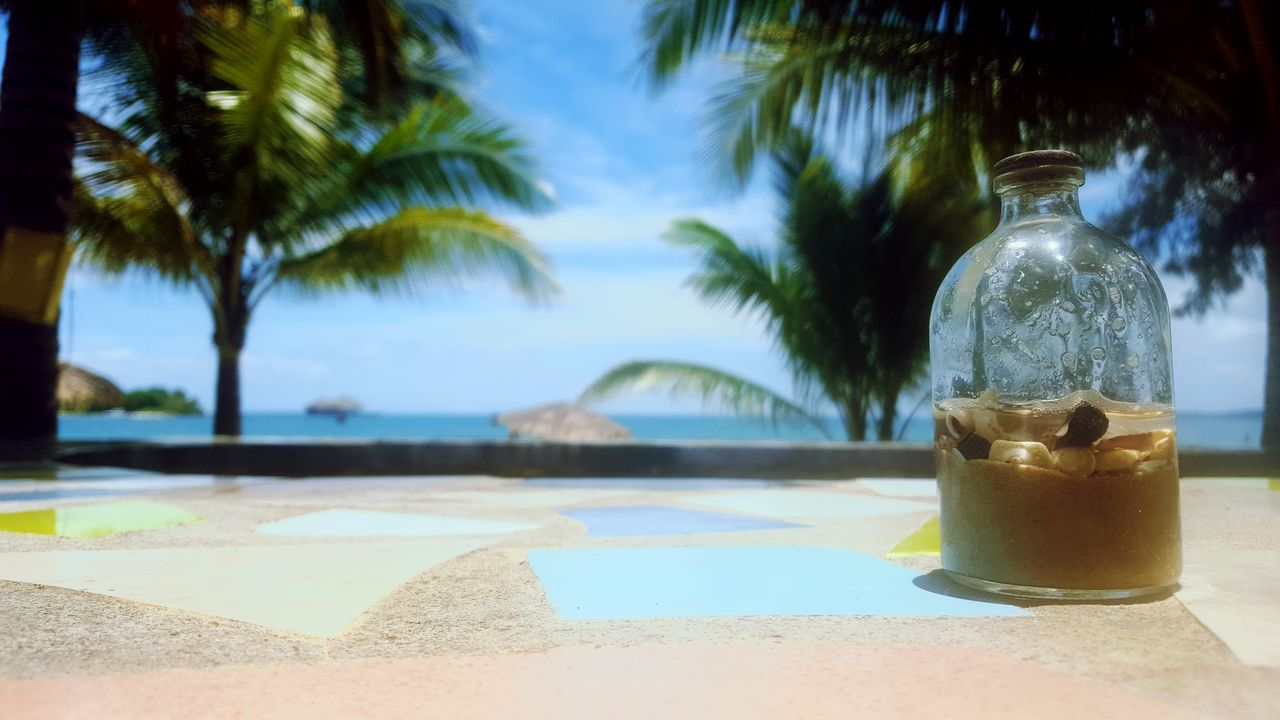 beach, palm tree, bottle, sea, focus on foreground, no people, food and drink, sunlight, water, drink, shadow, table, day, outdoors, freshness, vacations, sky, nature, close-up, tree, beauty in nature, food