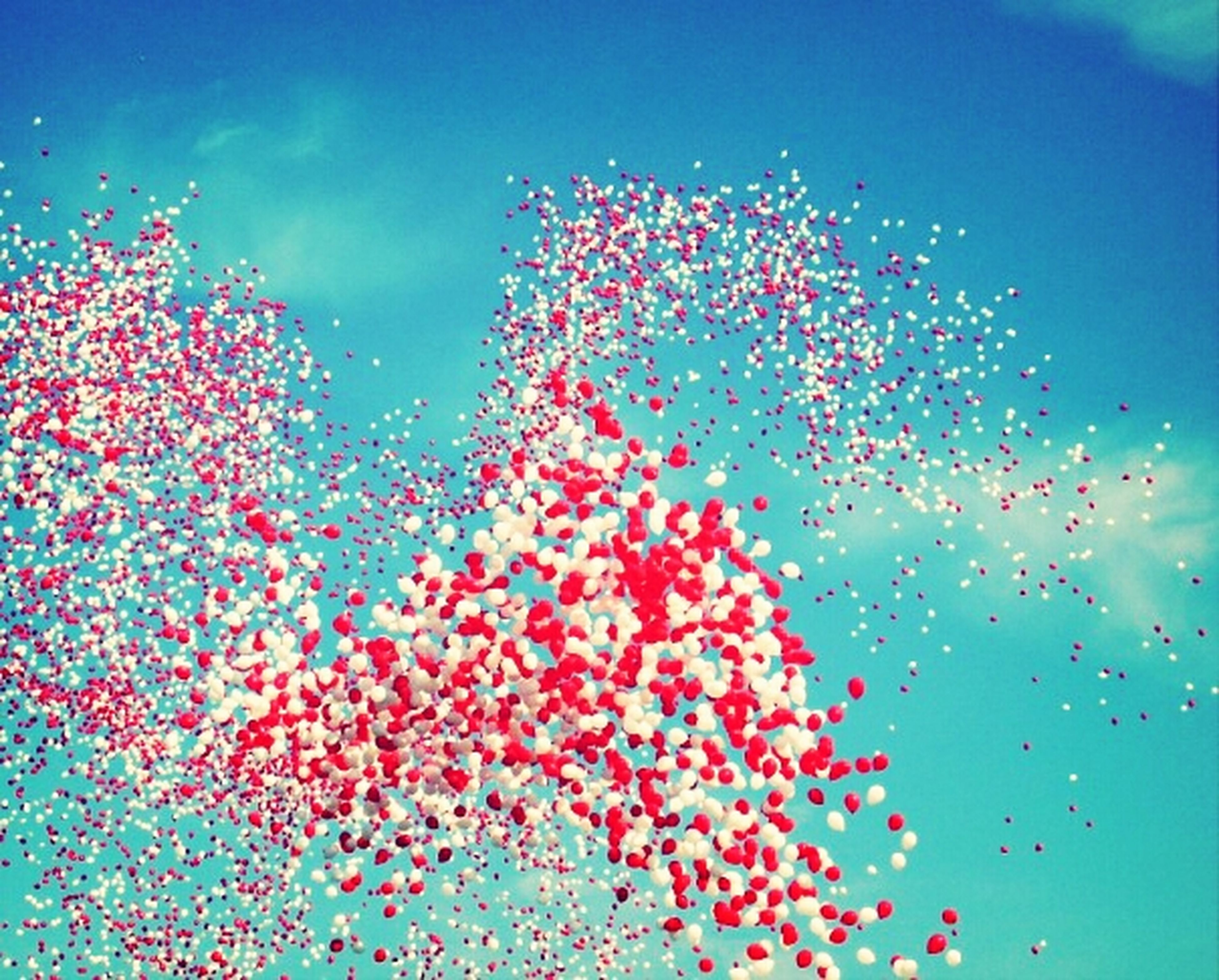 blue, low angle view, sky, celebration, red, clear sky, outdoors, water, fragility, nature, multi colored, no people, illuminated, pink color, day, freshness, close-up, motion, focus on foreground, beauty in nature