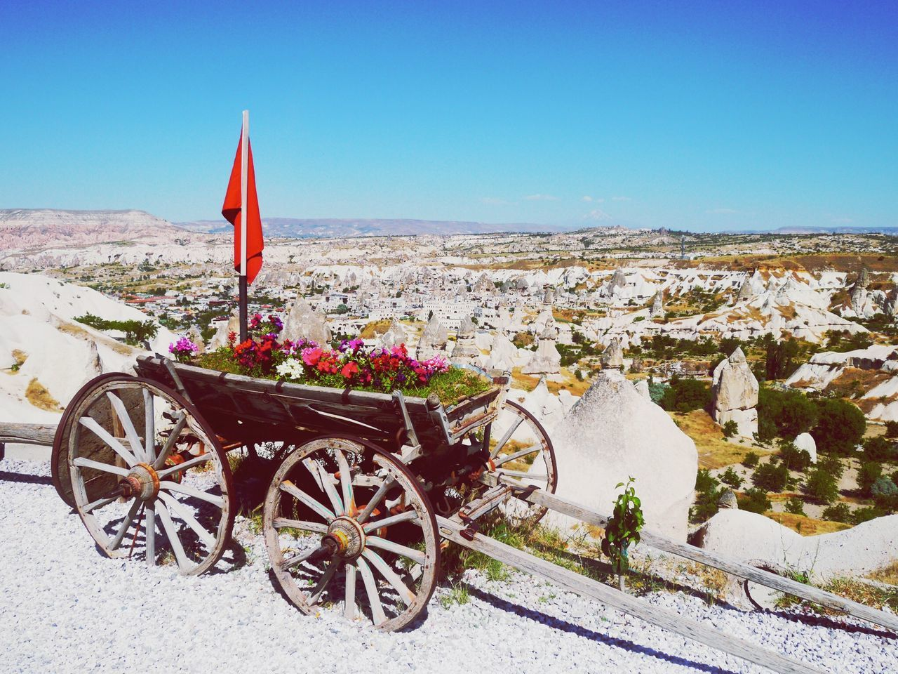 Wagon With Flowerbed