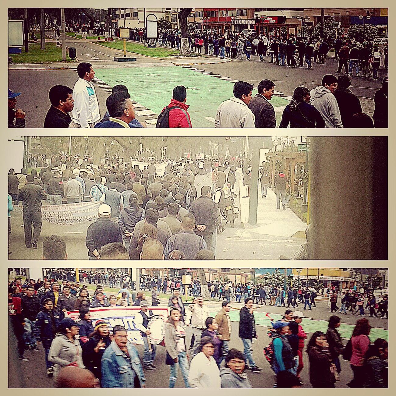 Manifestación Manifestación Manifestation Gentensity