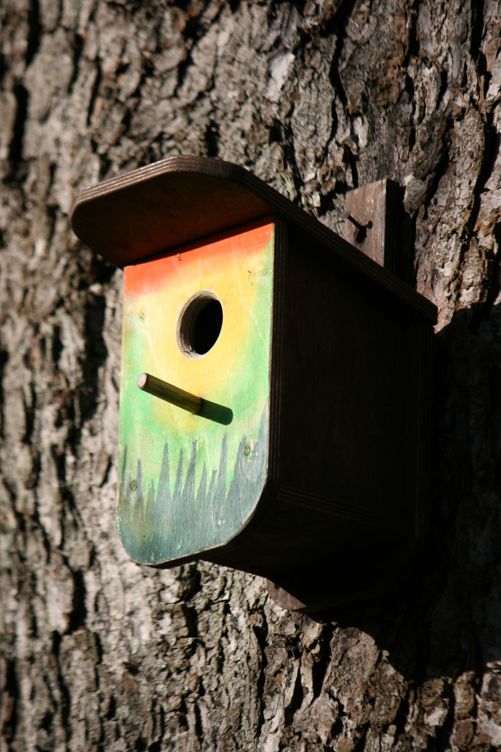 sunlight, no people, social issues, close-up, nature, outdoors, birdhouse, day