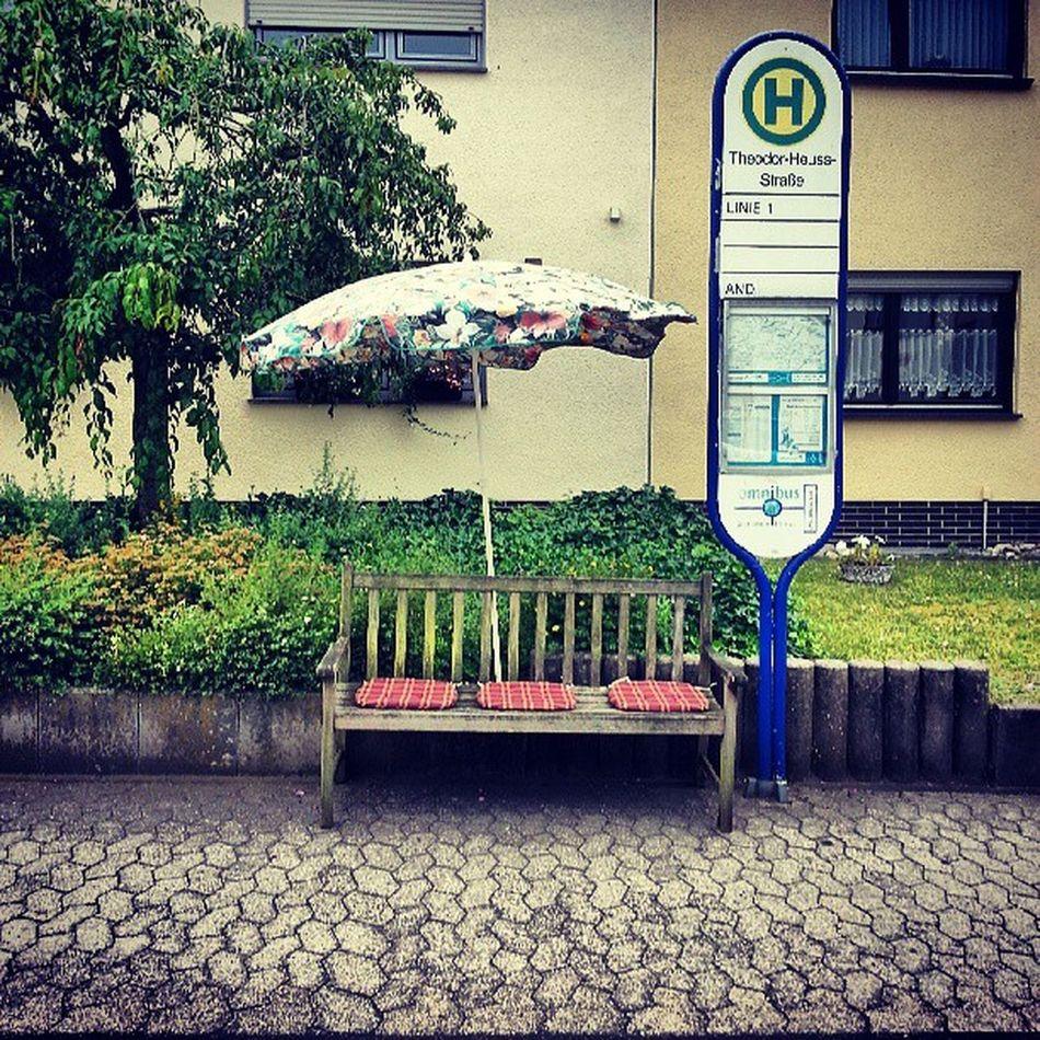 Und dann steht da plötzlich ne Bank. Natur Sommer Deutschland Koblenz Andernach Stilleben Igers Rheinstagram Igerskoblenz Instajogger Instabiker