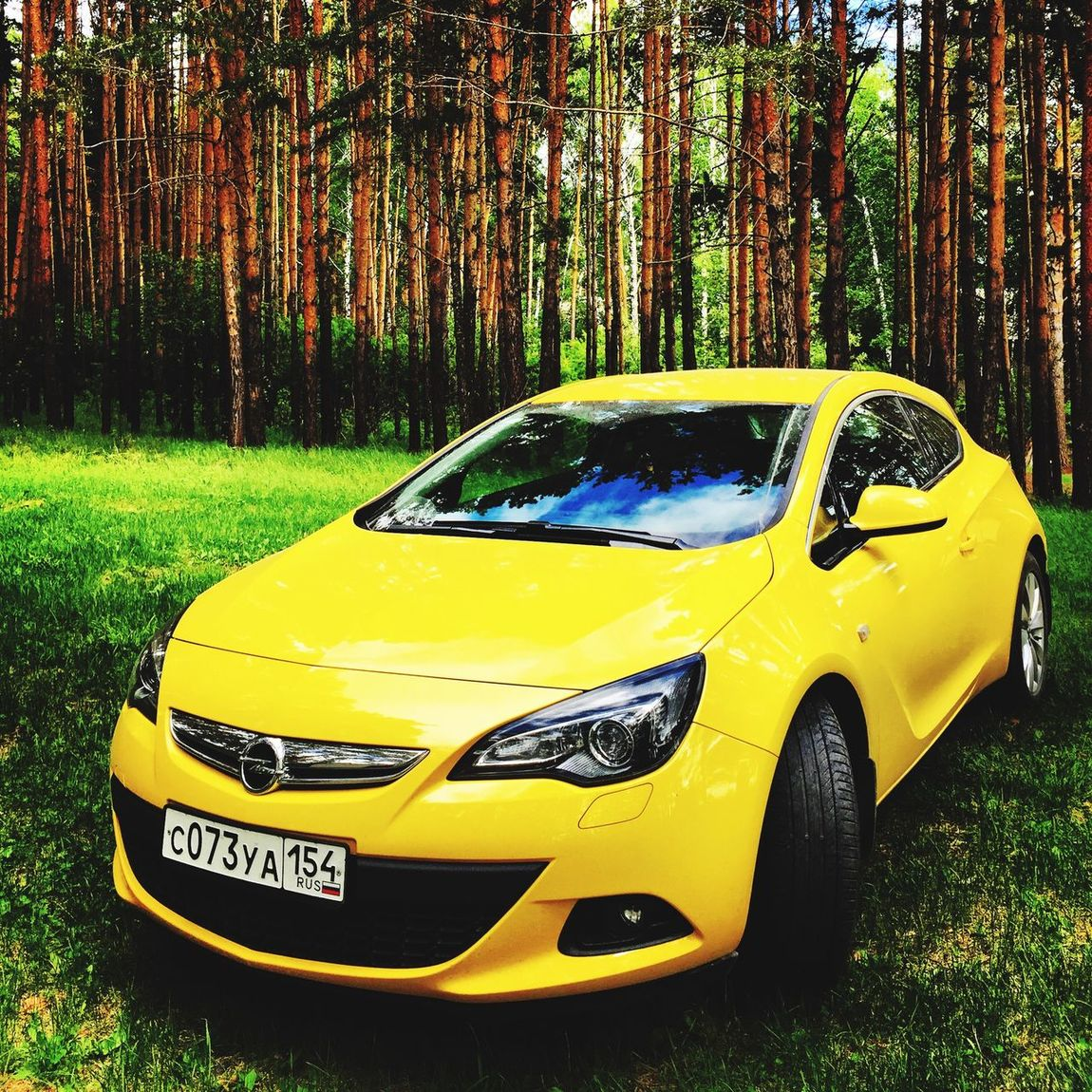 Check This Out Hanging Out Hi! Taking Photos Sun Auto Opel Opel Astra мояколесница Nature