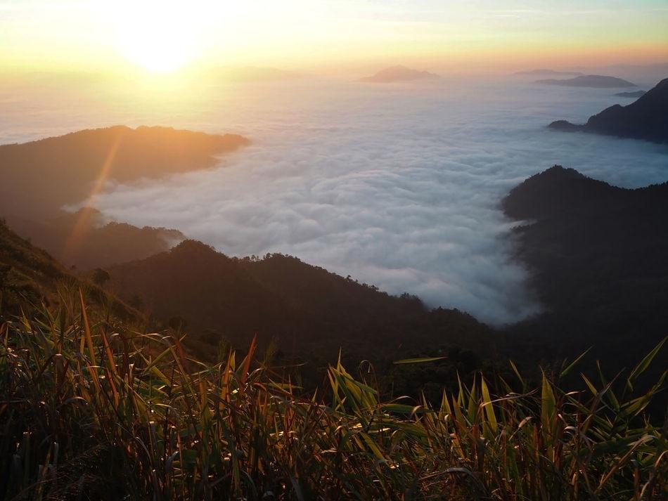 Beautiful stock photos of thailand,  Beauty In Nature,  Chiang Rai,  Day,  Horizontal Image