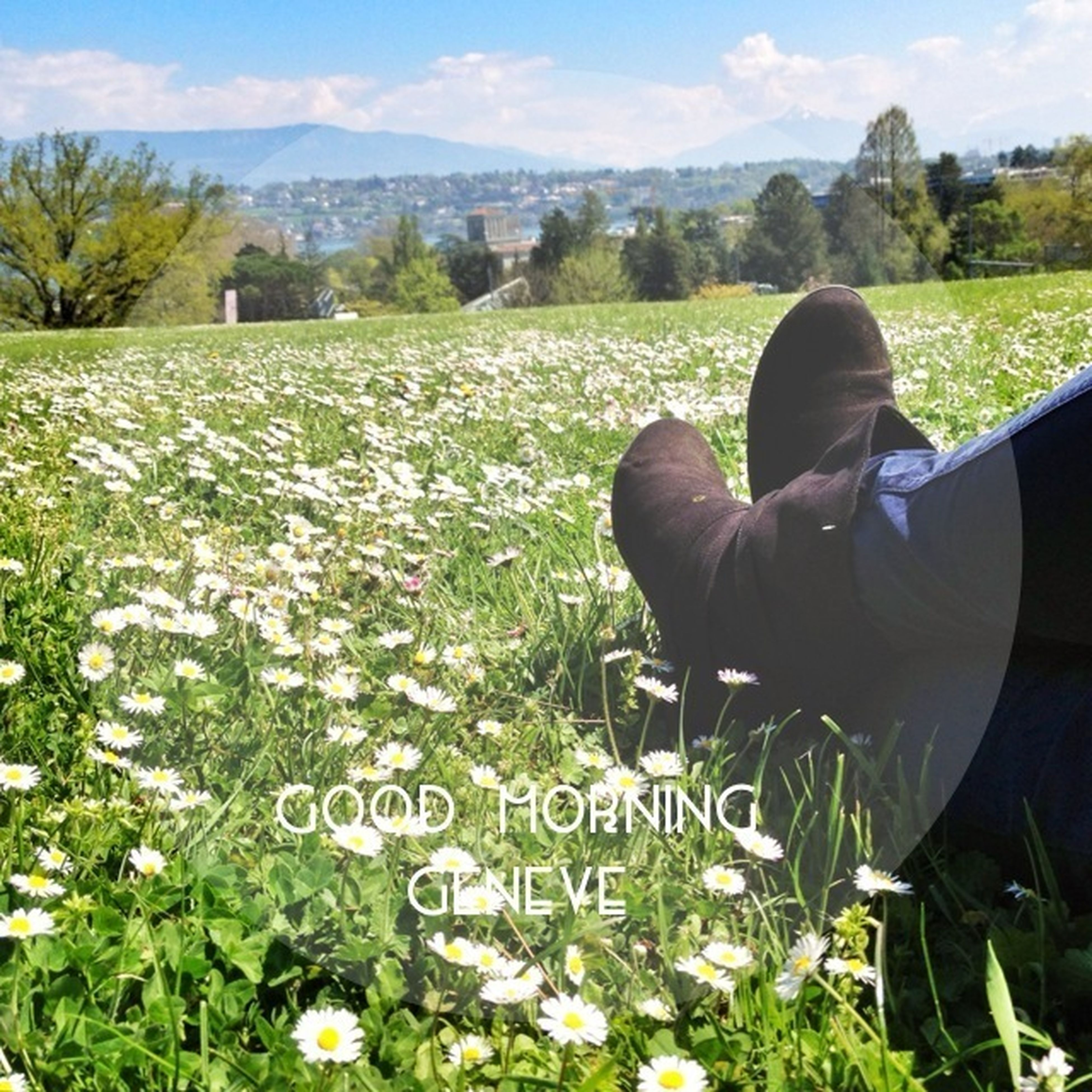 field, landscape, grass, beauty in nature, lifestyles, leisure activity, flower, mountain, nature, men, plant, tranquility, rural scene, tranquil scene, sky, growth, rear view, scenics