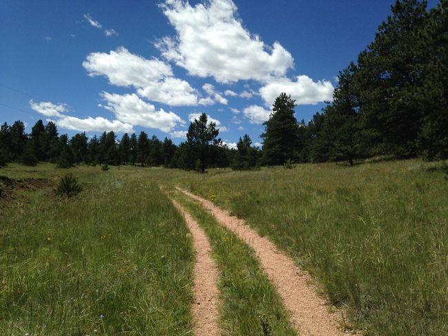 Colorado Florissant Walking Path