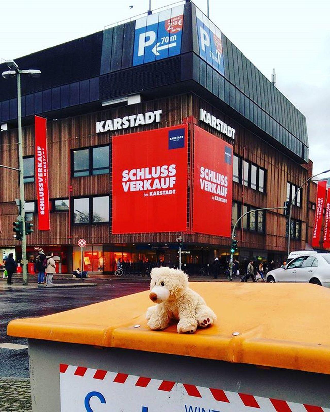 Berlin Bear Teddybear Instagramberlin Street