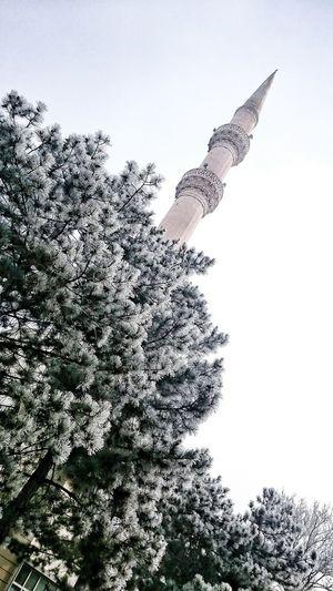 Konya Turkey Necmettinerbakanüniversitesi Ilahiyatfakultesicamii