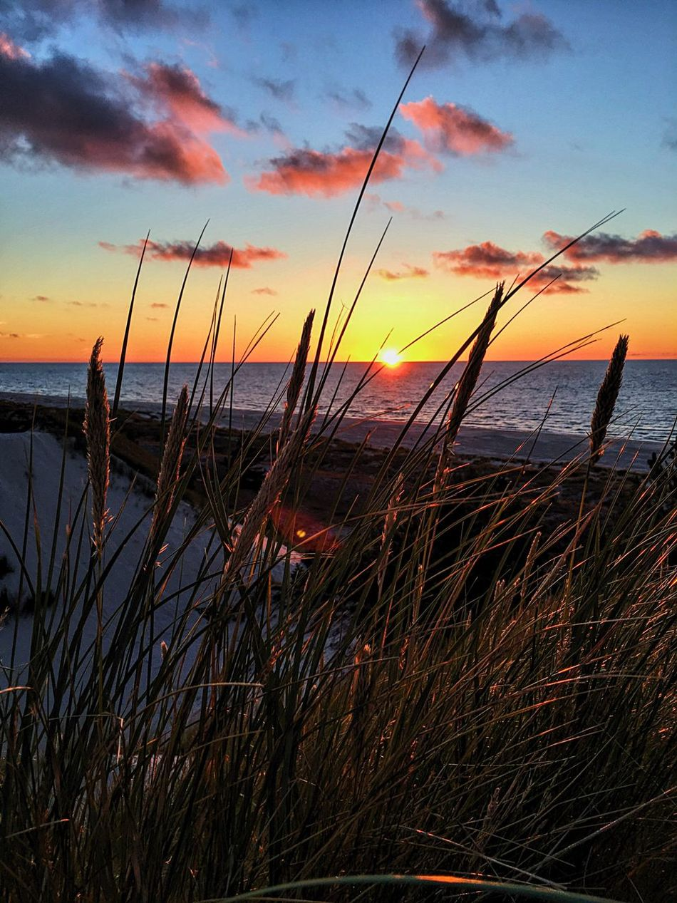 Wydmy Łeba Sea Water Sunset Sky Horizon Over Water Nature Tranquility Scenics Beauty In Nature Tranquil Scene Cloud - Sky Outdoors Beach No People Marram Grass Grass Day łeba Beauty In Nature Słowiński Park Narodowy