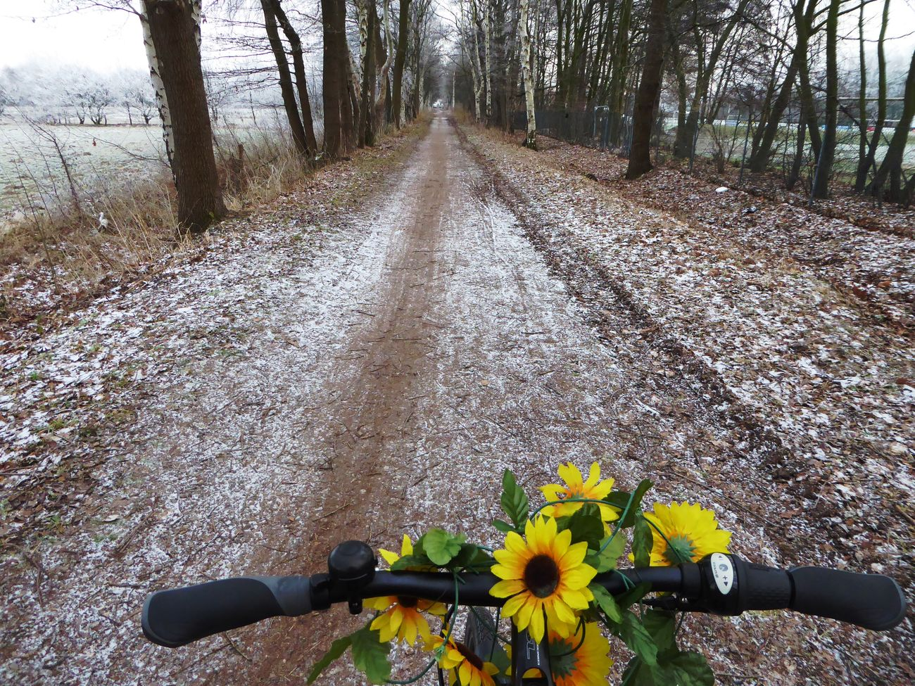On My Way To Work Radlweg Beauty In My Every Day Life Wintertime ⛄ For My Friends 😍😘🎁 Beauty In Nature Brrrrrrrrr❄❄❄❄ Frosty ⛄ Frozen Ground Beauty In Nature beauty in winter Bicycling Enjoying The View Nature