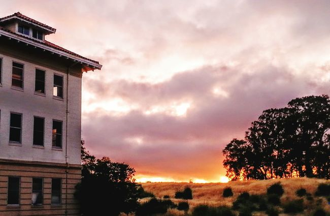 Sunset Sunsetporn Sunset_collection Old Oak Tree Old Buildings Beautiful View Sunsetlover City Escape Historical Building History Landscapes With WhiteWall