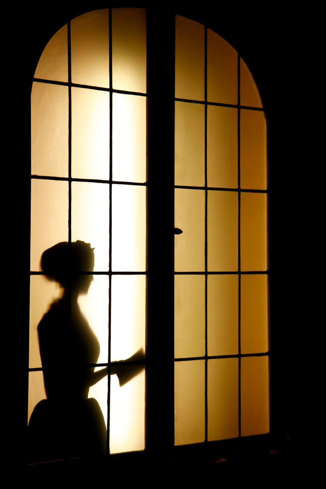 Silouette Silouette And Shadows Woman Woman Portraiture Woman Power Woman At Work Antique Old Elegance And Class Elegance Beauty Elegancewomen Calm Home Home Old Pharmacy Pharmacy Windows Window Light Windows And Doors