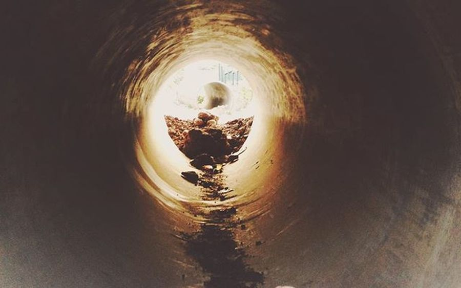 Tubes.., this ain't poop.. I don't think it is... Attract, just weirdly arranged mud,. Photography Photooftheday