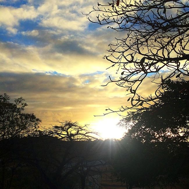 Ig_martinique_shadow Ig_martinique Ig_caribbean_sea Islandlivity Ig_caribbean Silhouette Westindies_sunset Westindies_nature Wu_caribbean Sunsetsareonme Shutterbug_collective Grenada Ilivewhereyouvacation