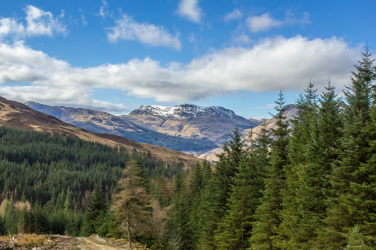 mountain, sky, nature, beauty in nature, landscape, no people, forest, mountain range, scenery, scenics, day, tree, outdoors