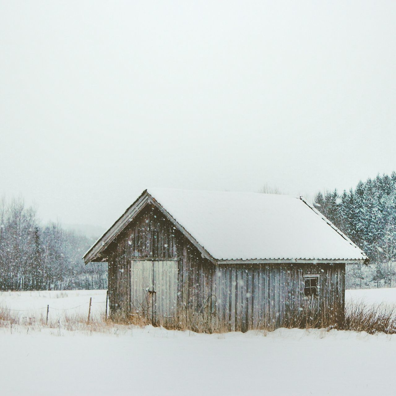 A snowy shelter Winter Wonderland EyeEm Nature Lover Landscape_photography Winter