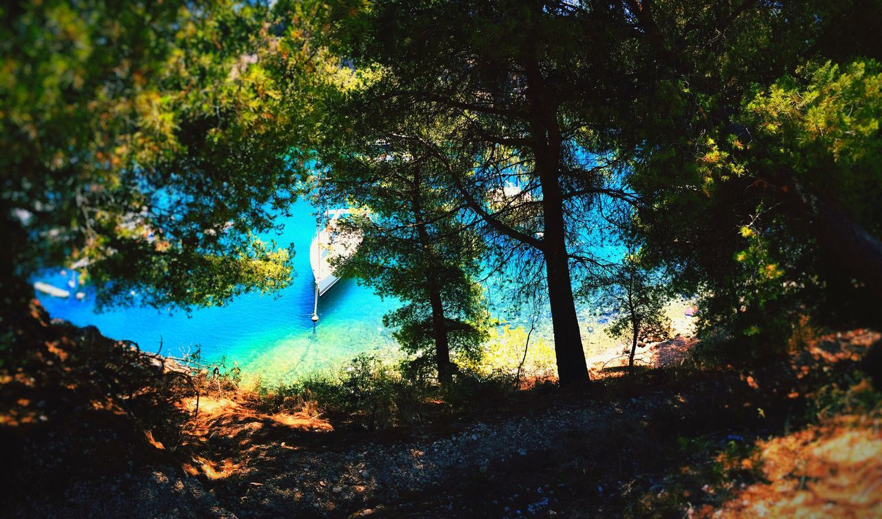Nature Calanques  Boat Sea Water Bleu Blue Sea Summer Nature_collection Nature Photography Naturephotography Landscape Landscape_Collection Holiday Littleboat Tree Trees Freedom Life Smallboat Barque Evasion Natural Beauty Colorful Beautiful Nature