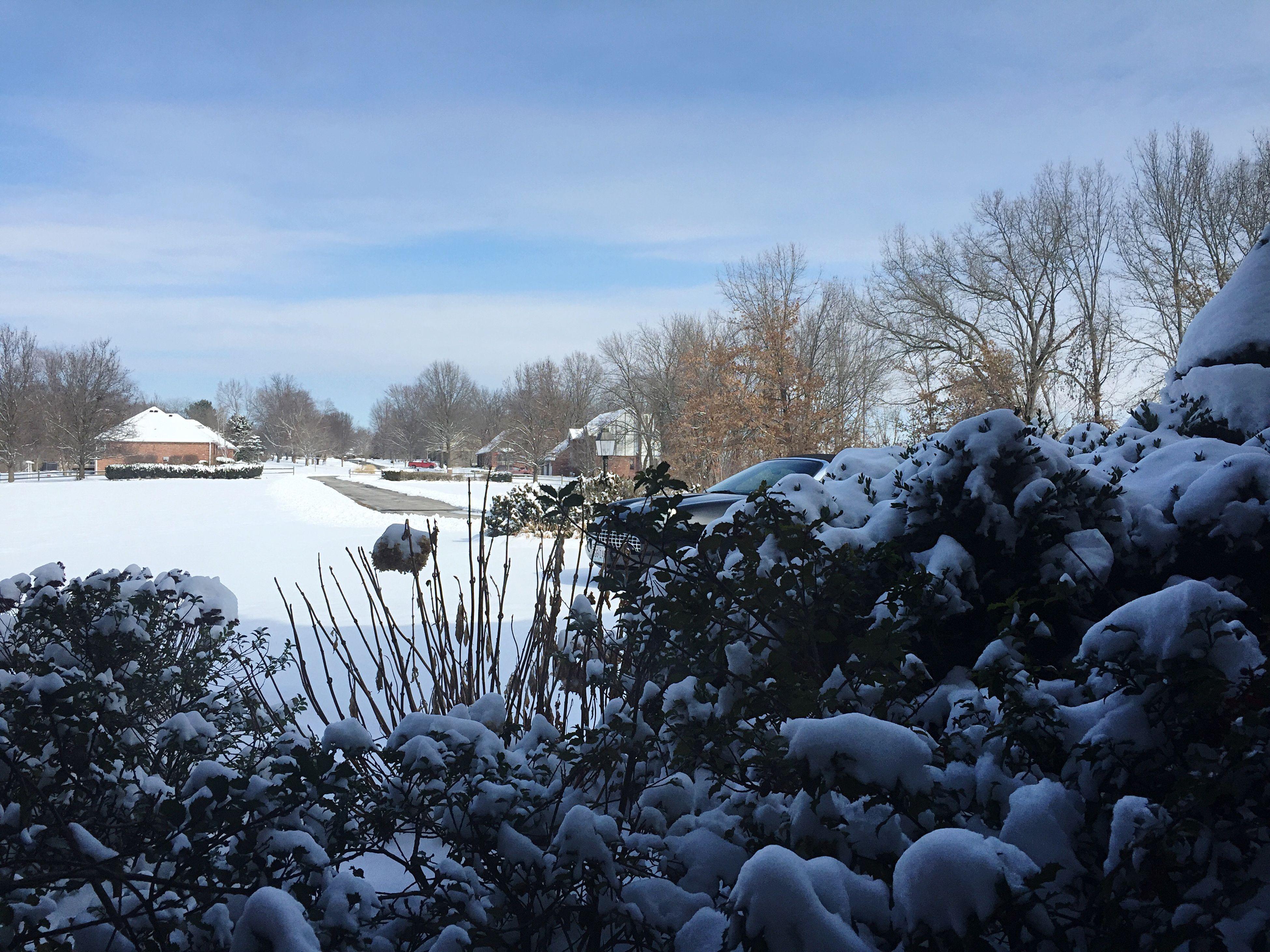 Winter day...