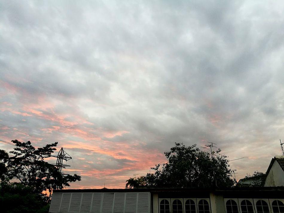☁🌫 Sunset Dramatic Sky Cloud - Sky Tree Silhouette Sky Palm Tree No People Outdoors First Eyeem Photo