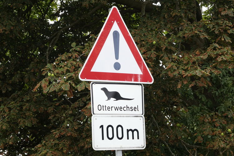 Otterwechsel Mecklenburg-Vorpommern Close-up Communication Crossing The Street Day Mecklenburg-Vorpommern No People Otter Otterwechsel Outdoors Road Sign Tree Triangle Shape Warning Sign