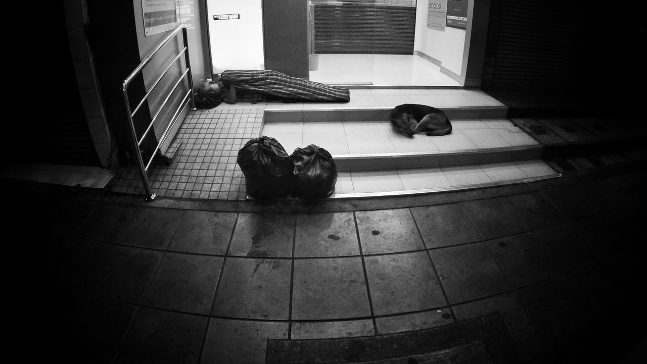 Domestic Animals Pets Animal Themes High Angle View Dog Mammal Tiled Floor Indoors  One Person Day People Sleeping In The Street Poorpeople Poor  Poorly Thailand Photos Silom Streetphotography GoPrography Now