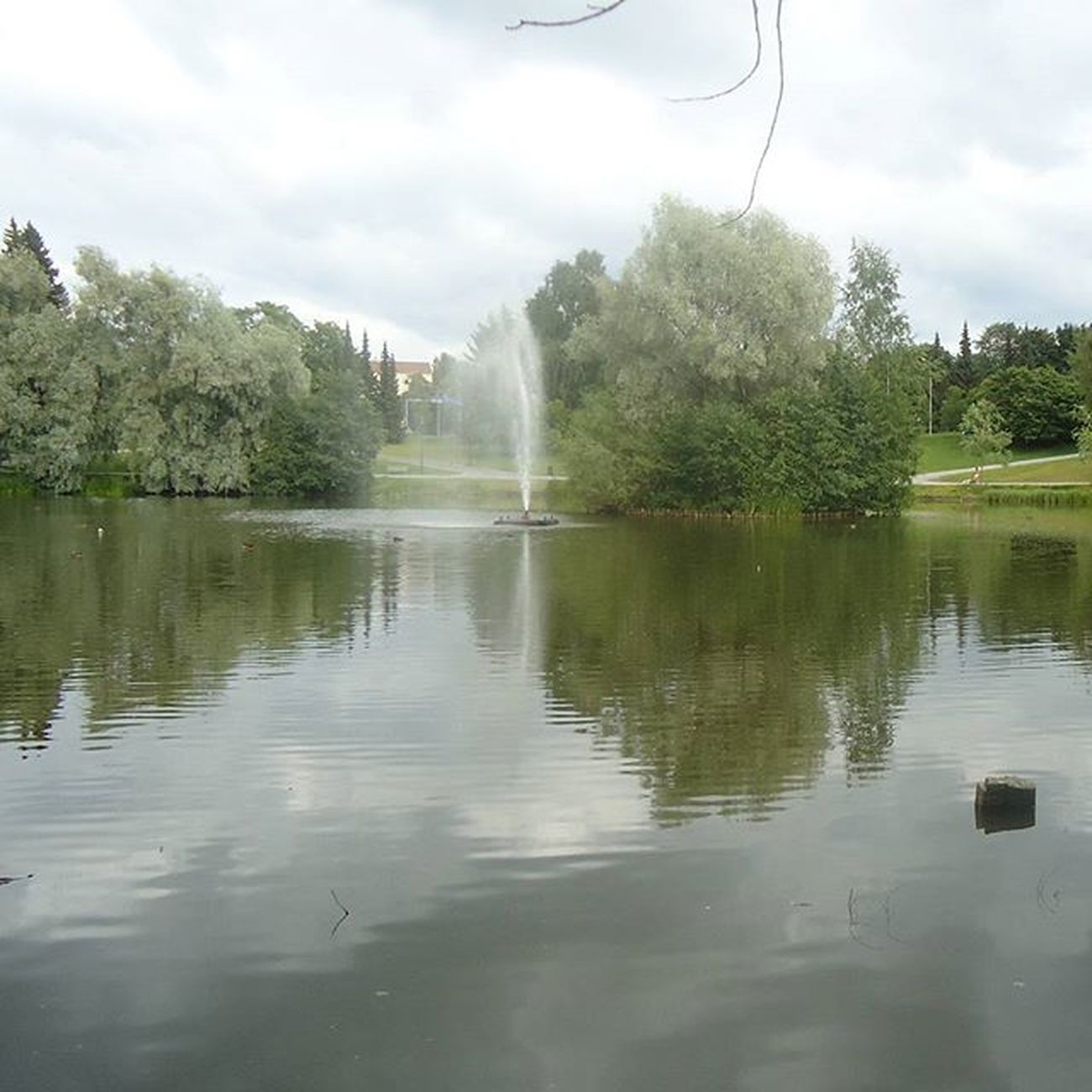 Sorsapuisto Tamperelove Tampereallbright Tampere Tre Visittampere Visitfinland Finland Suomi Puisto Park Parque  Beautiful Kaunis Water Vetta Kaunistampere
