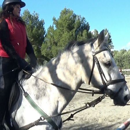 Horsestagram Horsefollowers Horse Abighorse Verybeautiful Galloping Themostbeautifultime Horsewhite Bigheart Bigpassion Bigboy Perfectcouple Foralways