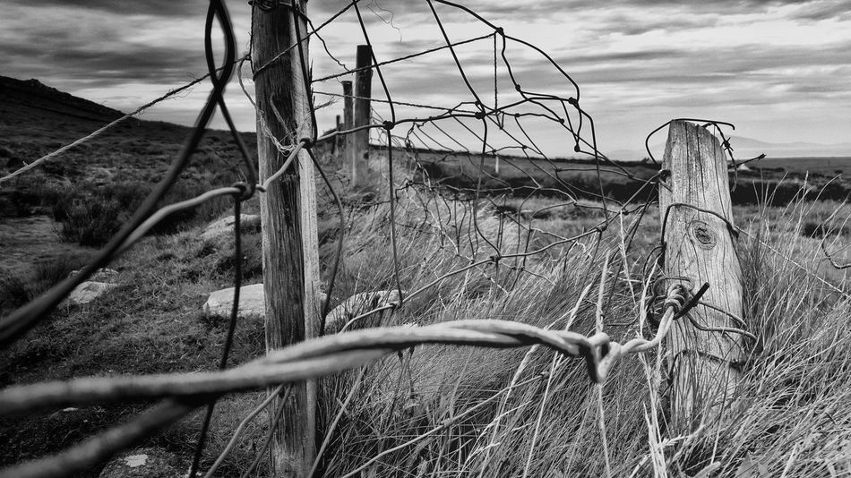 Landscape Fence Field Black And White Barbed Wire
